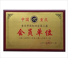 派斯克刀具荣誉重庆市商标协会第三届会员单位